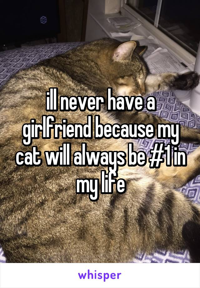 ill never have a girlfriend because my cat will always be #1 in my life