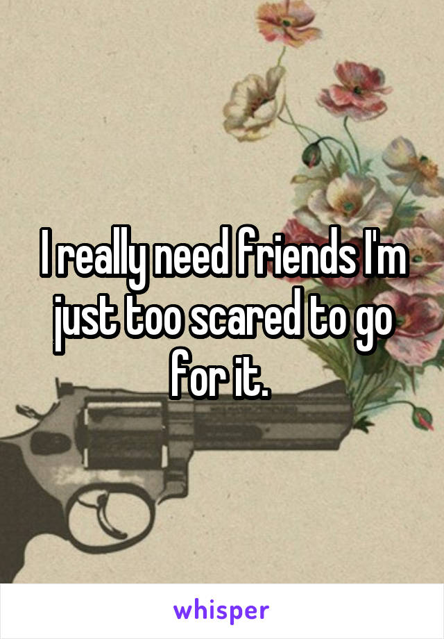 I really need friends I'm just too scared to go for it.