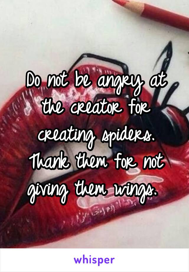 Do not be angry at the creator for creating spiders. Thank them for not giving them wings.