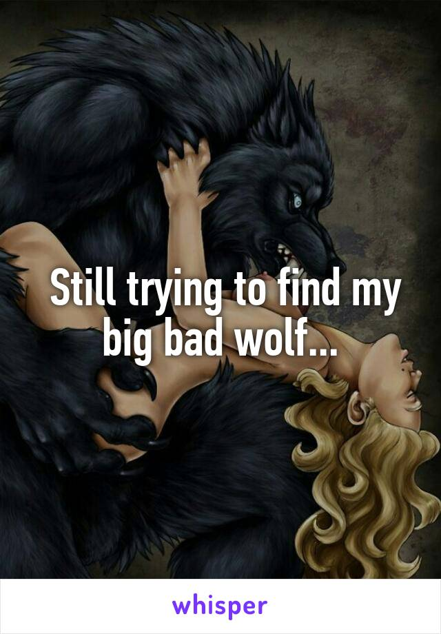 Still trying to find my big bad wolf...