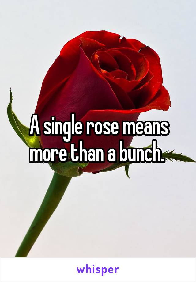A single rose means more than a bunch.
