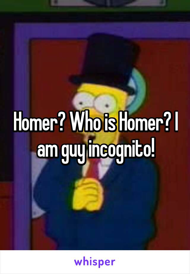 Homer? Who is Homer? I am guy incognito!