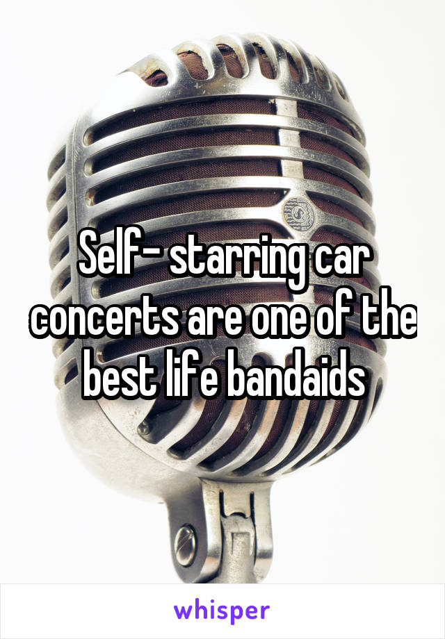 Self- starring car concerts are one of the best life bandaids