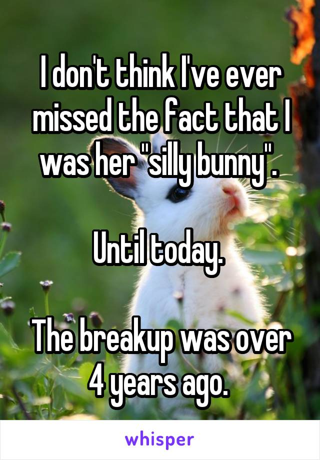 """I don't think I've ever missed the fact that I was her """"silly bunny"""".   Until today.   The breakup was over 4 years ago."""