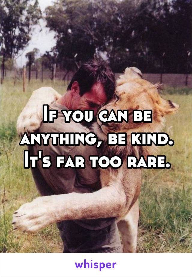 If you can be anything, be kind. It's far too rare.
