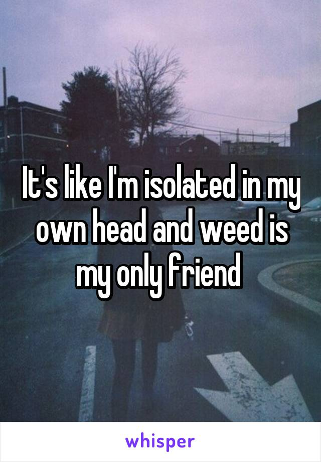 It's like I'm isolated in my own head and weed is my only friend