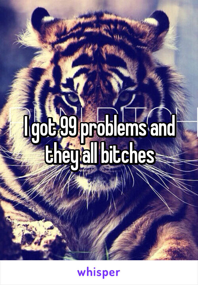 I got 99 problems and they all bitches