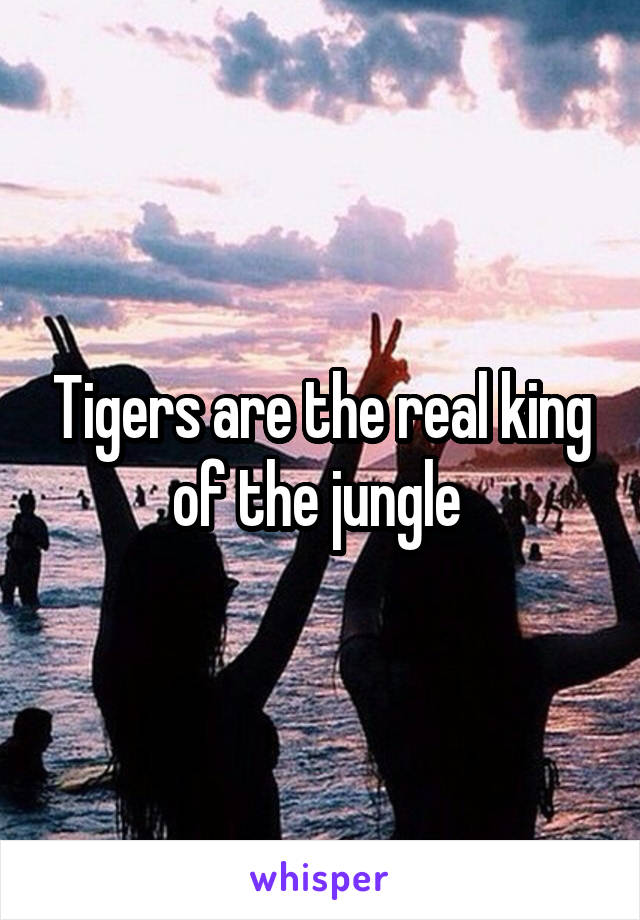 Tigers are the real king of the jungle