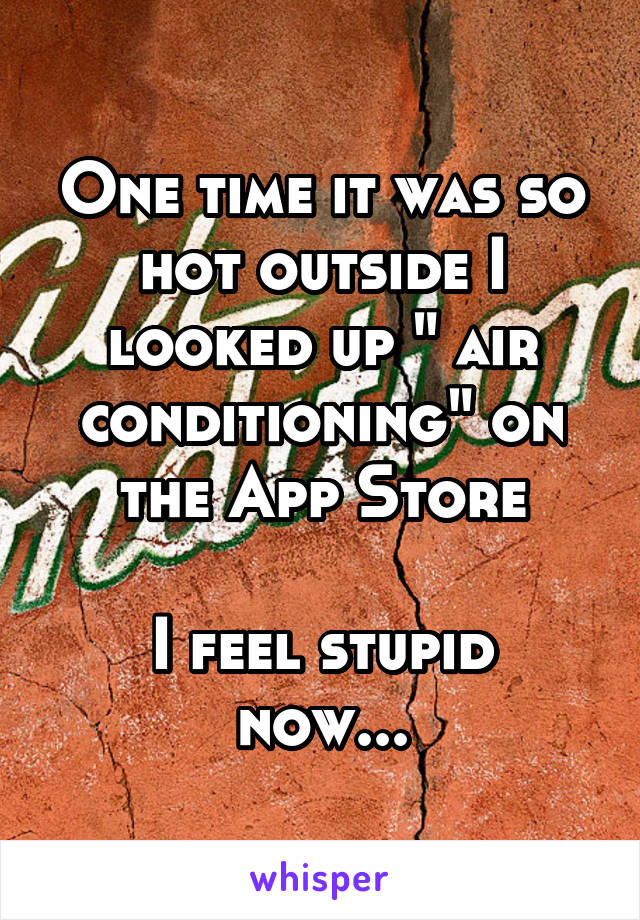 "One time it was so hot outside I looked up "" air conditioning"" on the App Store  I feel stupid now..."