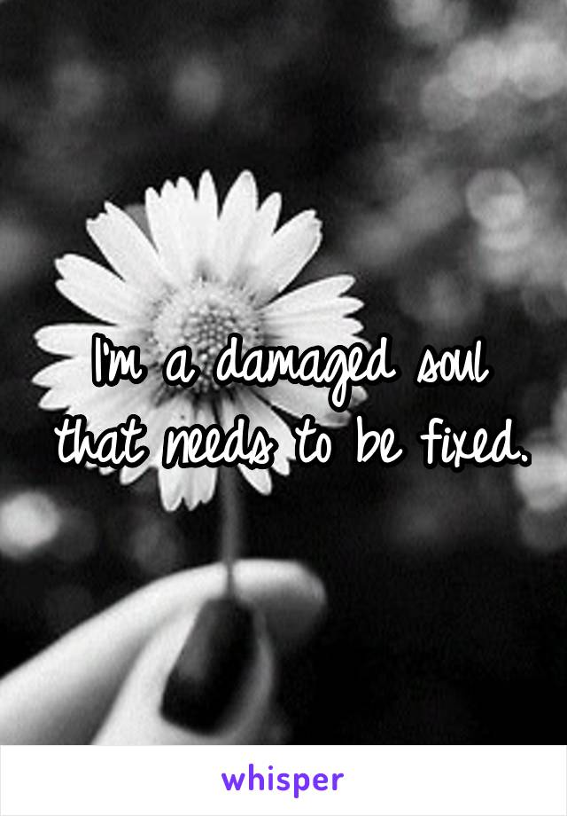 I'm a damaged soul that needs to be fixed.