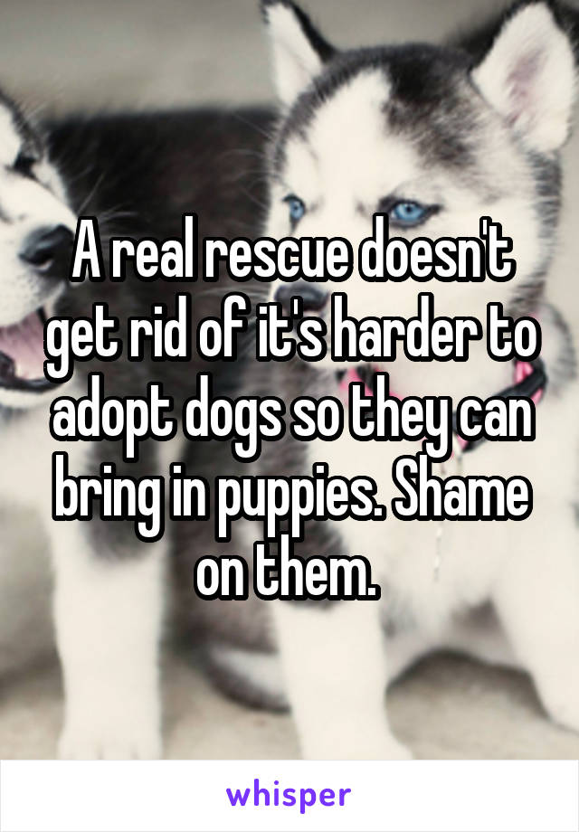 A real rescue doesn't get rid of it's harder to adopt dogs so they can bring in puppies. Shame on them.