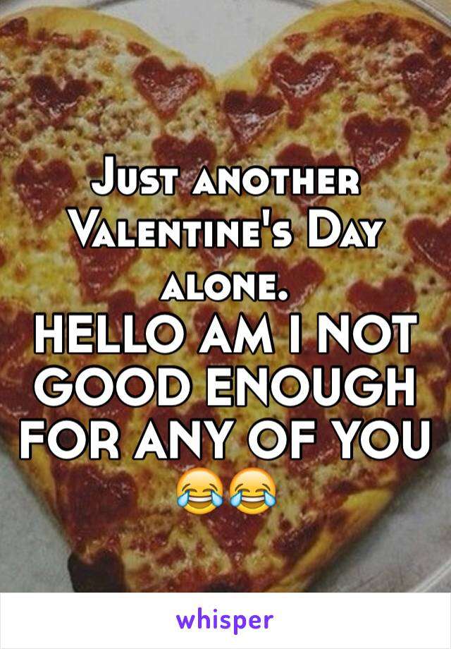 Just another Valentine's Day alone.             HELLO AM I NOT GOOD ENOUGH FOR ANY OF YOU 😂😂