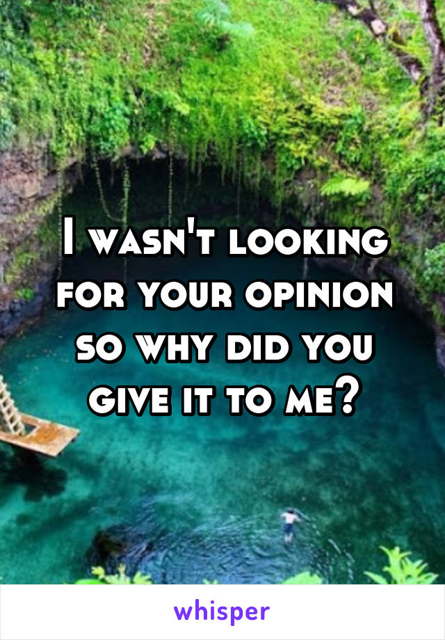 I wasn't looking for your opinion so why did you give it to me?
