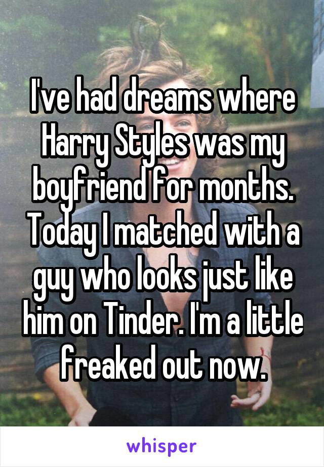 I've had dreams where Harry Styles was my boyfriend for months. Today I matched with a guy who looks just like him on Tinder. I'm a little freaked out now.
