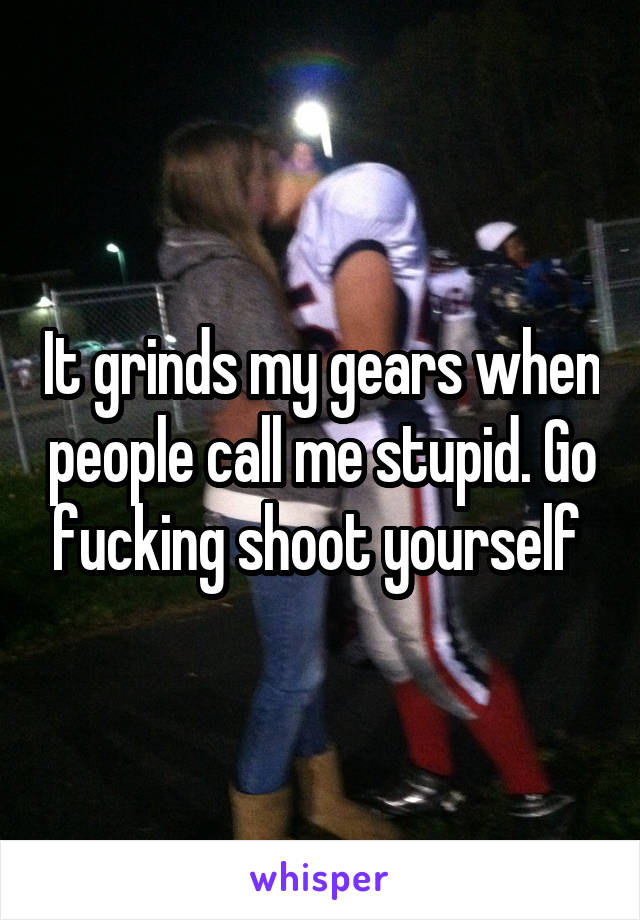 It grinds my gears when people call me stupid. Go fucking shoot yourself