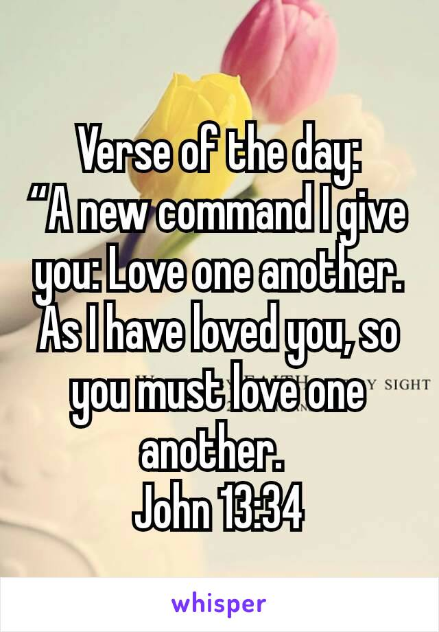 """Verse of the day: """"A new command I give you: Love one another. As I have loved you, so you must love one another. John 13:34"""