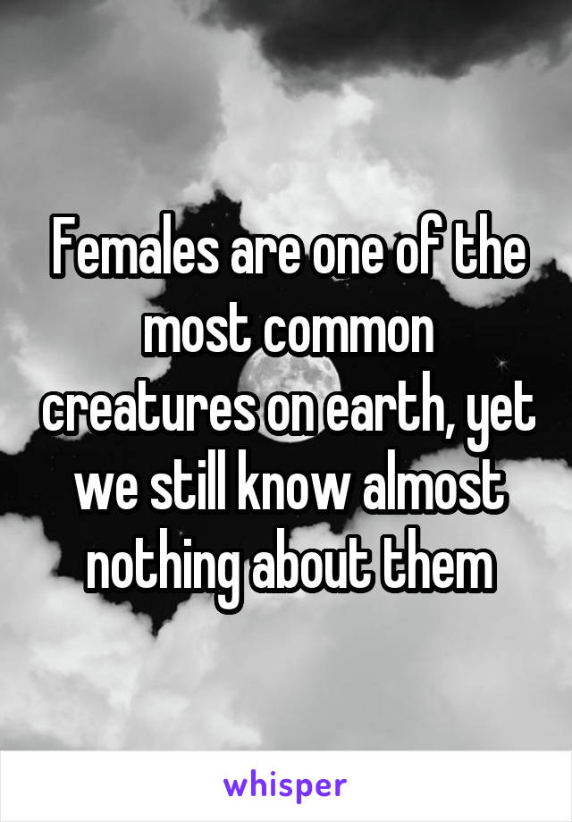 Females are one of the most common creatures on earth, yet we still know almost nothing about them