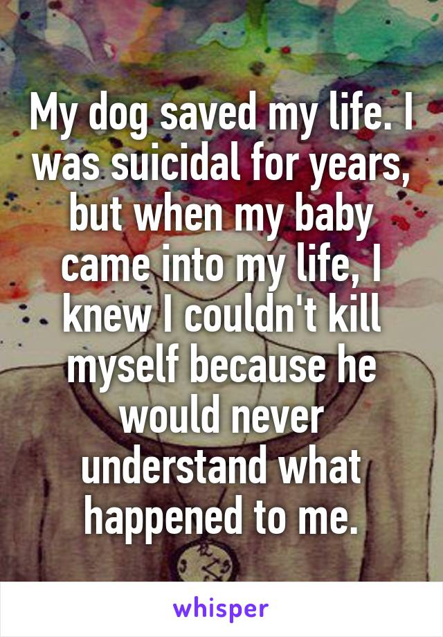 My dog saved my life. I was suicidal for years, but when my baby came into my life, I knew I couldn't kill myself because he would never understand what happened to me.