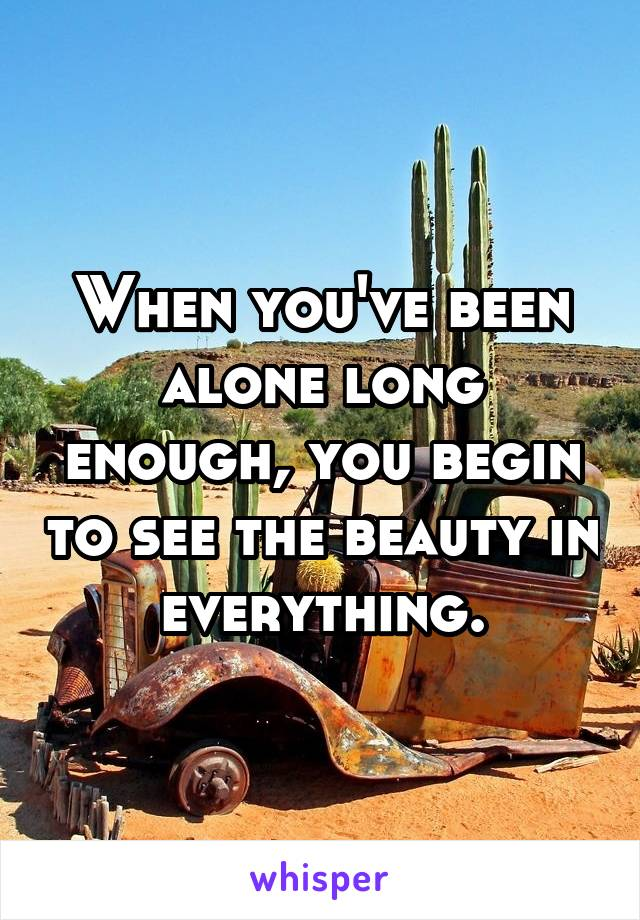 When you've been alone long enough, you begin to see the beauty in everything.