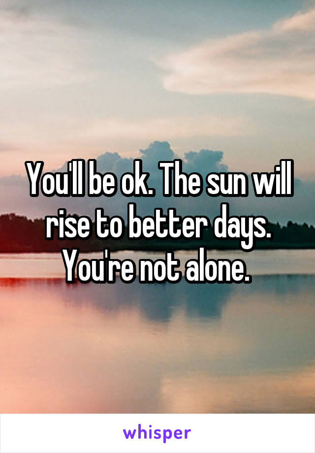 You'll be ok. The sun will rise to better days. You're not alone.