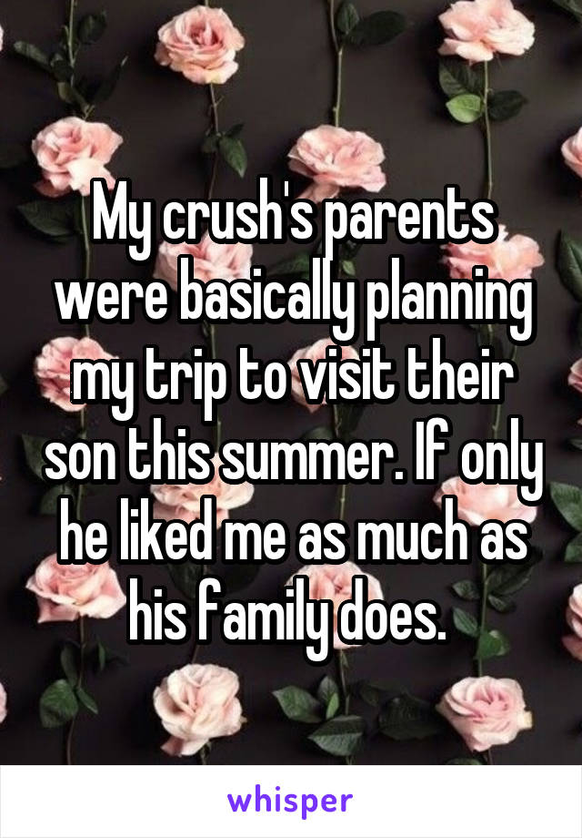 My crush's parents were basically planning my trip to visit their son this summer. If only he liked me as much as his family does.