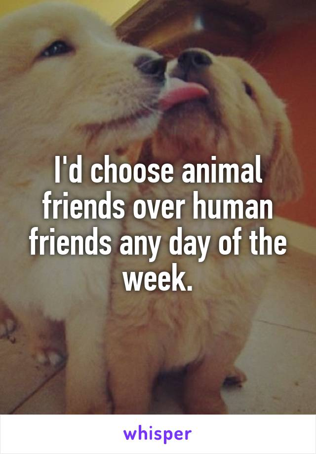 I'd choose animal friends over human friends any day of the week.