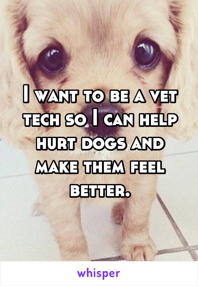 I want to be a vet tech so I can help hurt dogs and make them feel better.