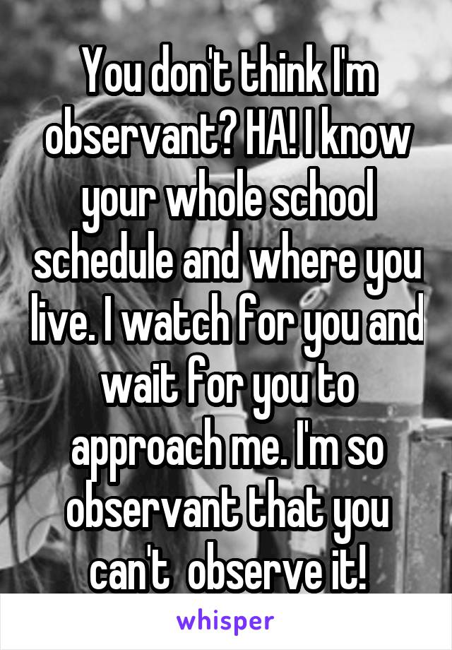 You don't think I'm observant? HA! I know your whole school schedule and where you live. I watch for you and wait for you to approach me. I'm so observant that you can't  observe it!