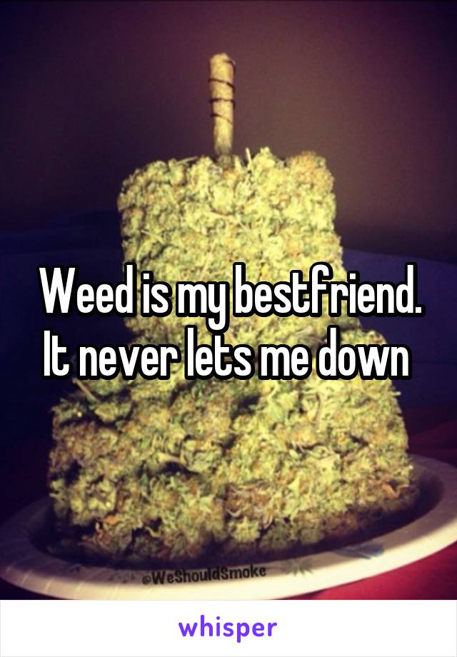 Weed is my bestfriend. It never lets me down