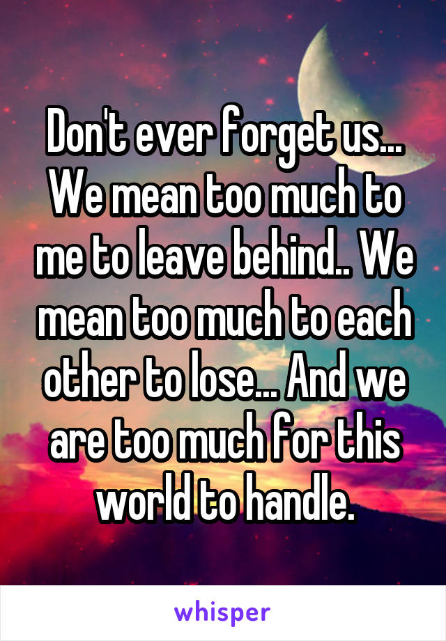 Don't ever forget us... We mean too much to me to leave behind.. We mean too much to each other to lose... And we are too much for this world to handle.