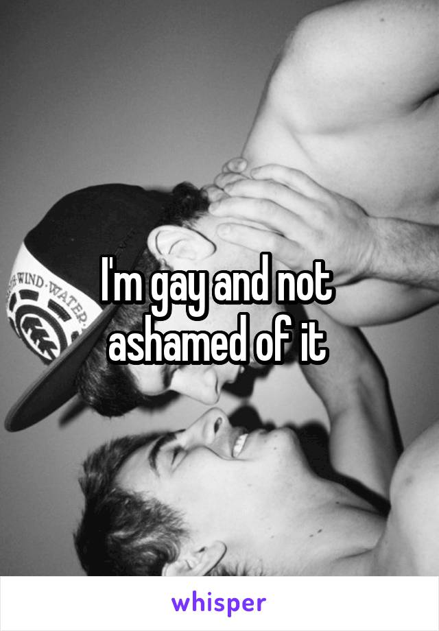 I'm gay and not  ashamed of it