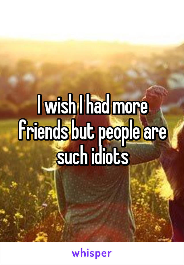 I wish I had more friends but people are such idiots