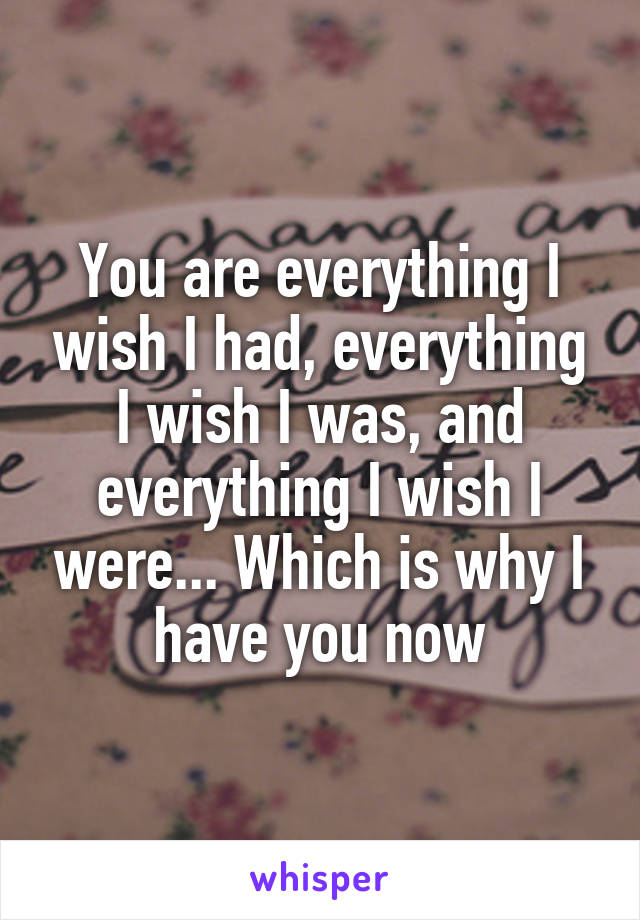 You are everything I wish I had, everything I wish I was, and everything I wish I were... Which is why I have you now