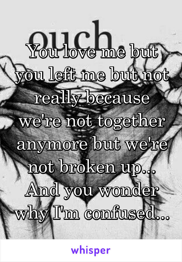 You love me but you left me but not really because we're not together anymore but we're not broken up... And you wonder why I'm confused...