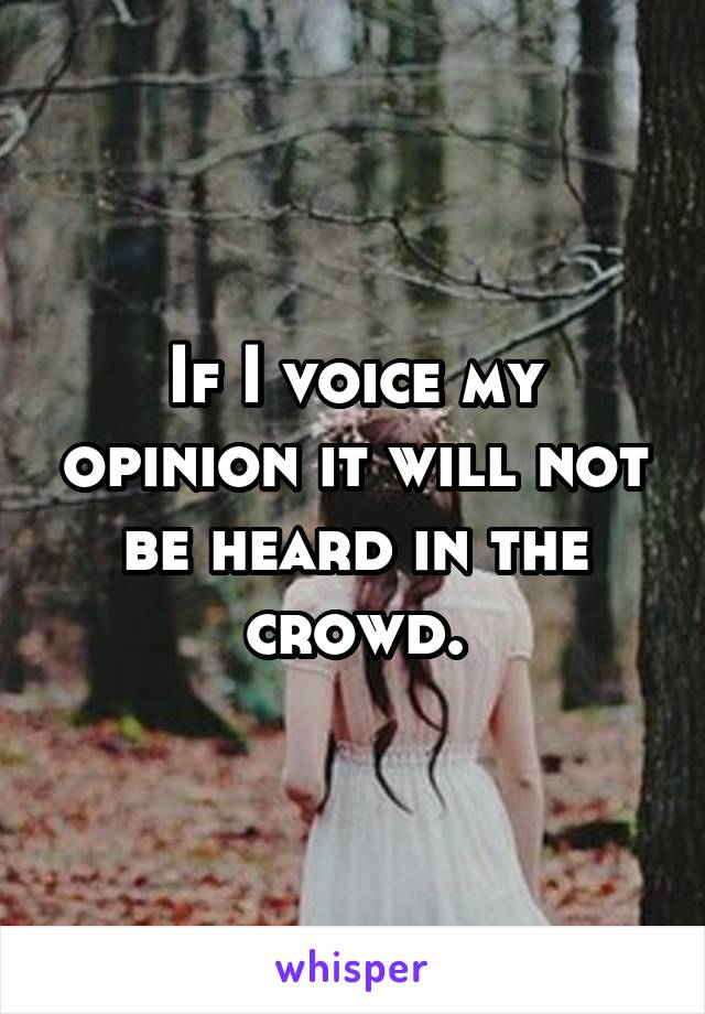 If I voice my opinion it will not be heard in the crowd.