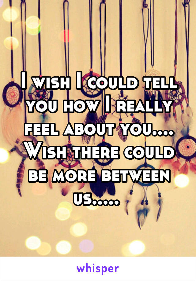 I wish I could tell you how I really feel about you.... Wish there could be more between us.....