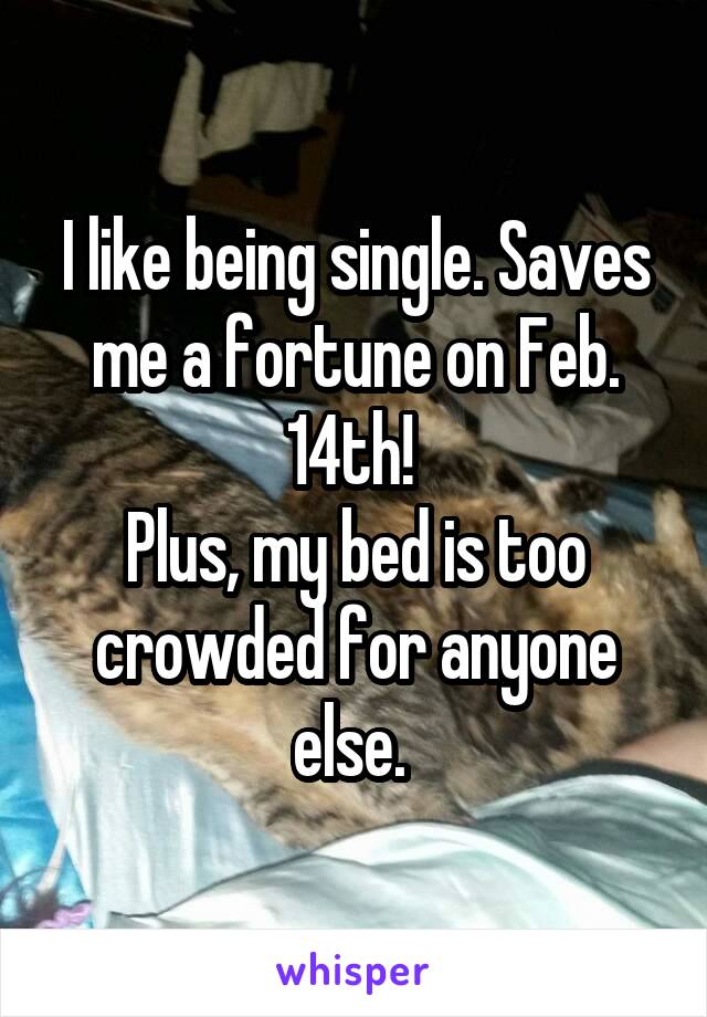 I like being single. Saves me a fortune on Feb. 14th!  Plus, my bed is too crowded for anyone else.