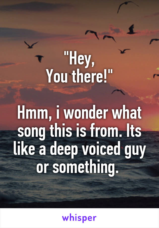 """""""Hey, You there!""""  Hmm, i wonder what song this is from. Its like a deep voiced guy or something."""