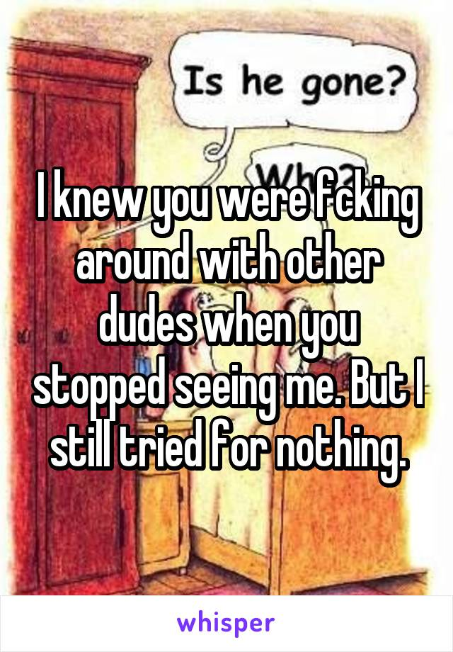 I knew you were fcking around with other dudes when you stopped seeing me. But I still tried for nothing.