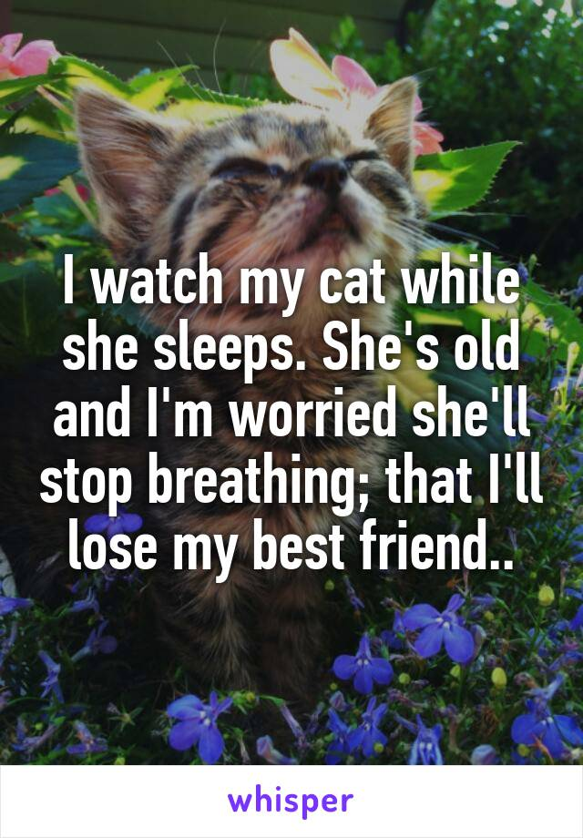 I watch my cat while she sleeps. She's old and I'm worried she'll stop breathing; that I'll lose my best friend..