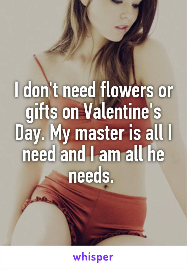 I don't need flowers or gifts on Valentine's Day. My master is all I need and I am all he needs.