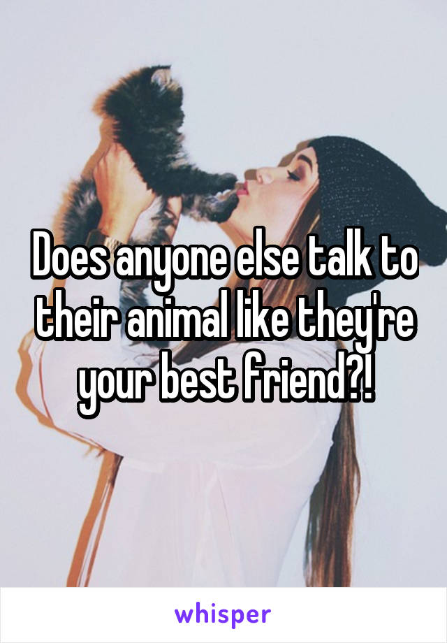 Does anyone else talk to their animal like they're your best friend?!