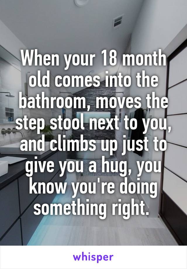 When your 18 month old comes into the bathroom, moves the step stool next to you, and climbs up just to give you a hug, you know you're doing something right.