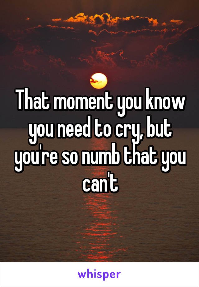 That moment you know you need to cry, but you're so numb that you can't