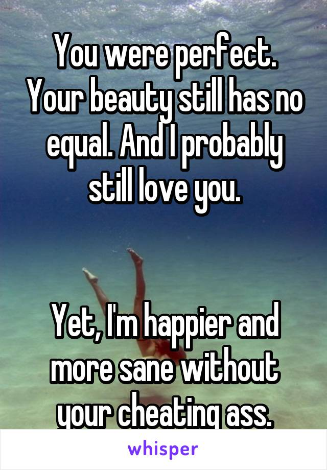 You were perfect. Your beauty still has no equal. And I probably still love you.   Yet, I'm happier and more sane without your cheating ass.