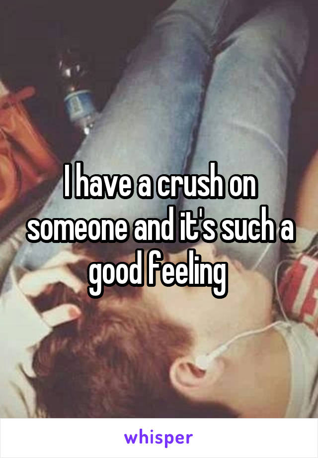 I have a crush on someone and it's such a good feeling