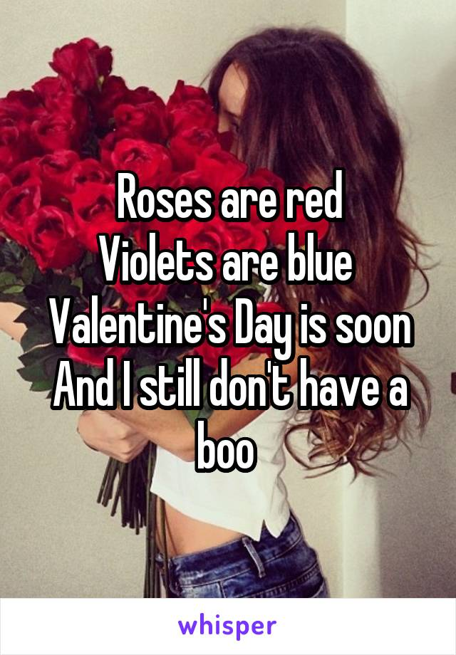 Roses are red Violets are blue  Valentine's Day is soon And I still don't have a boo