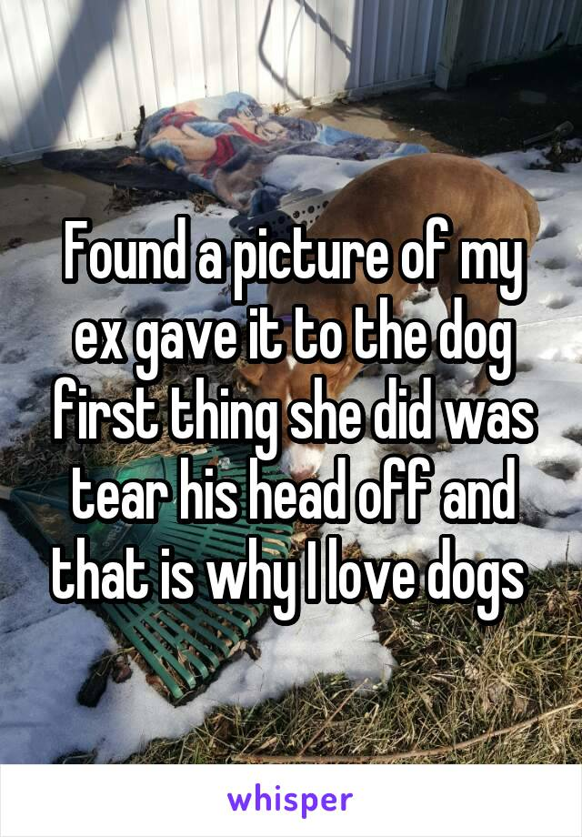 Found a picture of my ex gave it to the dog first thing she did was tear his head off and that is why I love dogs