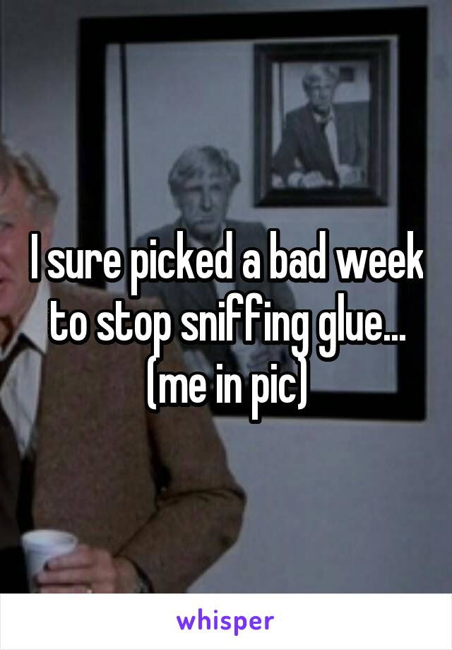 I sure picked a bad week to stop sniffing glue... (me in pic)