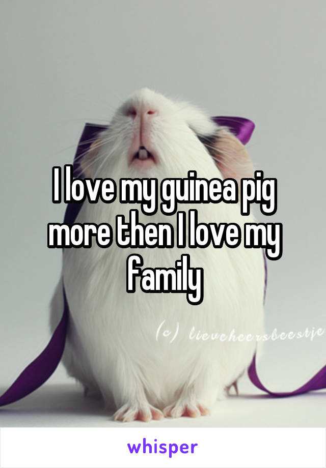 I love my guinea pig more then I love my family